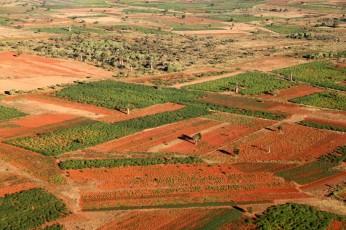 Vor der Landung, etwas ausserhalb der Stadt, roterdige Felder und Baobabs.